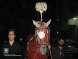 http://www.Misagh.net/UserPic/Photos/Pakistan/T-Pakistan-(16).jpg